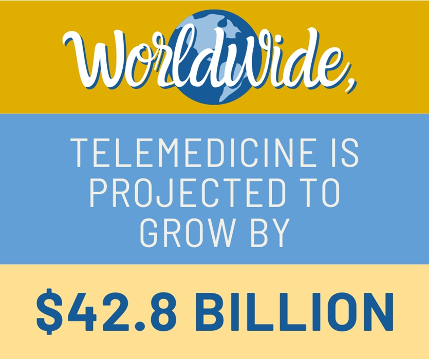 Telemedicine and Telehealth Specifically for Hospitals